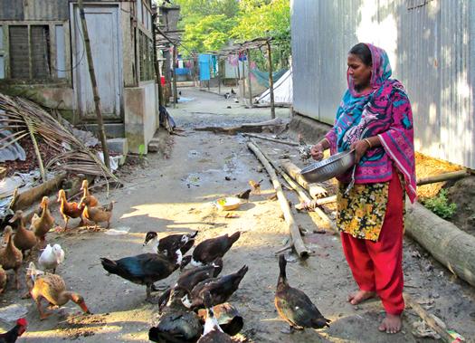 Dolena Begum get back BDT 75,000 by village court